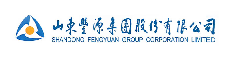 Logo Shandong Fengyuan Group