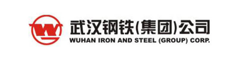 Logo Wuhan Iron And Steel Group